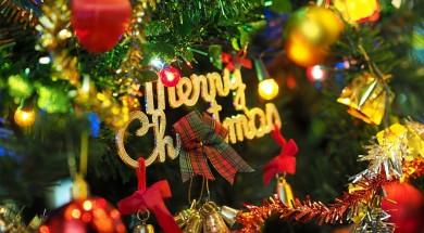 the-christmas-tree-1081323_960_720