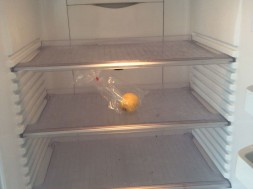 Empty_fridge