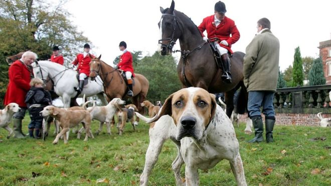 May has dropped fox hunting vote